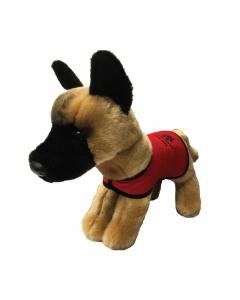 Belgian Malinois Dog